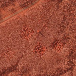 An aerial image of the WESBOGY sites with a false infrared view.